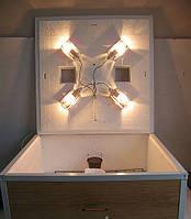 Инкубатор бытовой для яиц Курочка Ряба 130 с усиленной стенкой из пластика (цифровой терморегулятор)