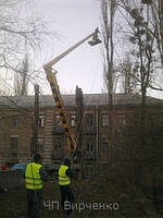 Корчевание пней Киев.Удаление деревьев,спил,обрезка дерева.