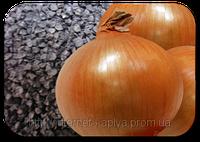 Лук репчатый Халцедон 10 г. Украина (Ukraine)