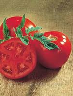 Семена томата Санрайз 1000 сем.Семинис.