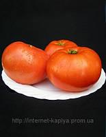 Семена томата Мирсини 1000 сем.Семинис.