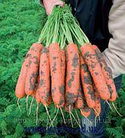 Семена моркови Нерак F1 1,6 - 1,8 1 000 000 сем. Бейо заден.