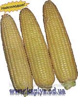 Кукуруза сахарная Свит Парадайз F1 25000сем. Ларк Сидз