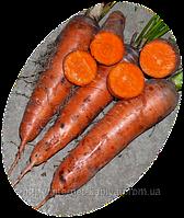 Семена моркови Курода 0,5кг. Ларк сидс.