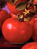 Семена томата Марисса F1 500 сем. Семинис.