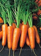 Семена моркови Роял Шансон 1 кг. Семинис.