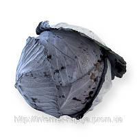 Семена капусты калиброванное Родима F1 2500сем. Рийк цваан.