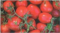Семена томата Фокер F1 25000 сем.Нунемс.