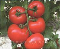 Семена томата Диаграмма F1 500 сем.Нунемс.