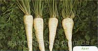 Семена петрушки Арат 50 гр. Бейо заден.