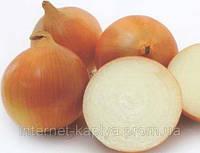 Семена лука Пандеро F1. 100000 сем.Нунемс.