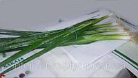 Семена лука на перо Лонг Уайт Кошигая 50 гр.Саката.