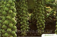 Семена капусты Брюсельской Диабло F1 2500 сем. Бейо заден.