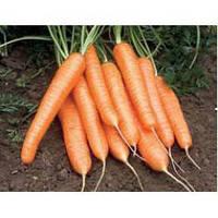 Морковь Рига F1 (калибр>1.6)   1 000 000 сем. Рийк Цваан.