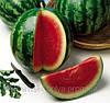 Семена арбуза Кримсон свит. 5 кг. пачка Hollar Seeds