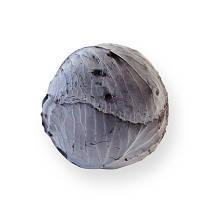 Семена капусты калиброванное Рексома F1 1000сем. Рийк цваан.