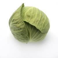 Семена капусты Секома калиброванное. 2500 сем. Рийк цваан.