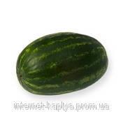 Семена арбуза Колумбия 62-281 F1 1000 сем.  Рийк Цваан.