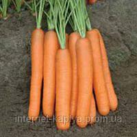 Морковь Монанта F1 50 гр. Рийк Цваан.