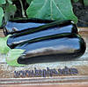 Семена баклажана Анатолия F1 100 сем. Рийк цваан.