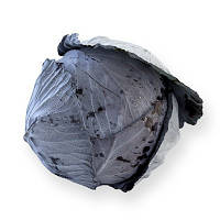Семена капусты калиброванное Родима 1000сем. Рийк цваан.