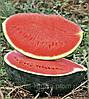 Семена арбуза Баронеса 100 сем.  Рийк Цваан.