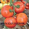 Семена томата Куеридо F1 100 сем. Рийк цваан.