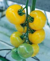 Семена томата Гуалдиньо F1 500 сем. Enza Zaden