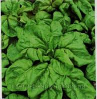 Семена шпината Боа 25 000 сем. Рийк цваан.