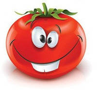 Семена томата Дофу 73-521. 100 сем.Рийк цваан.