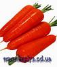 Семена моркови Наполи F1 2,0 - 2,2 1 000 000 сем. Бейо заден.