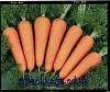 Семена моркови Каскад F1 2,0 - 2,2 1 000 000 сем. Бейо заден.