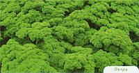 Семена петрушки Петра 500 гр. Бейо заден.
