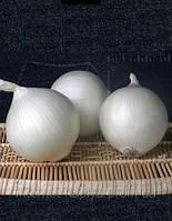 Семена лука Оризаба F1  250 000 сем. Семинис.