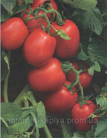 Семена томата Хайнц 1015 F1 5000сем.Heinz