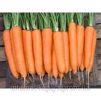 Семена моркови Элеганс F1 100000 сем. Нунемс.1,4-1,6мм.