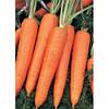 Семена моркови Камаран F1 2,0 - 2,2 1 000 000 сем. Бейо заден.