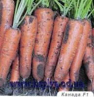Семена моркови Канада F1 1,8-2 25 000 сем. Бейо заден.