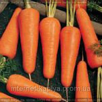 Семена моркови Купар F1 1,6 - 1,8 1 000 000 сем. Бейо заден.