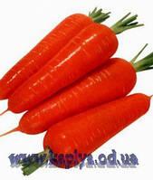 Семена моркови Наполи F1 1,6 - 1,8 1 000 000 сем. Бейо заден.