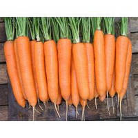 Семена моркови Колтан F1 100000 сем. Нунемс.1,6-1,8мм.