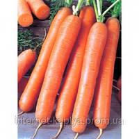 Морковь Форто 100 г. Семинис