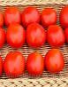 Семена томата Платекс F1(Конкистадор) 1000 сем.Семинис.