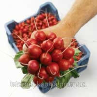 Семена редиса Дабел F1 2,25-2,50 10 000 сем. Нунемс.