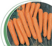 Семена моркови Болеро F1 100 000сем. Никерсон-Цваан
