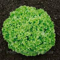 Семена салата Оникс дражированные 5000 сем. Нунемс.