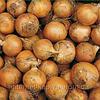 Семена лука Робот F1 250 000 сем. Никерсон-Цваан