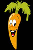 Семена моркови Тексто F1 калиброванное 100 000сем. Никерсон-Цваан