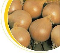 Семена лука Карлос F1 250 000 сем. Никерсон-Цваан