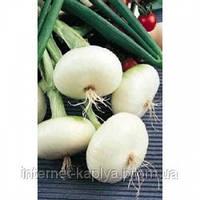 Семена лука на перо Де Барлетта 250 гр. Nickerson-zwaan
